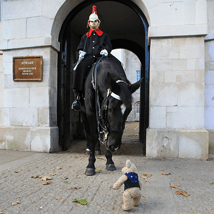 Binky and Horse Guards