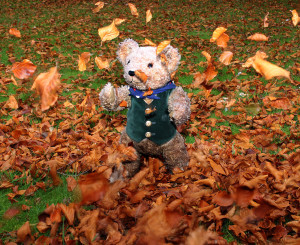 Binky throw up autumn leaves on days out with the kids