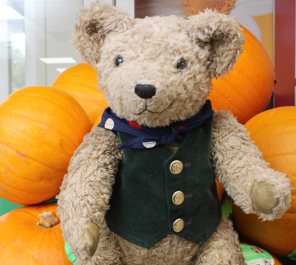 Binky Bear and Pumpkins