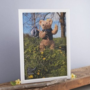 Binky Bear on a hike print