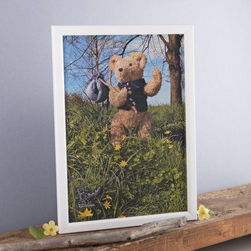 Binky Bear on a hike print
